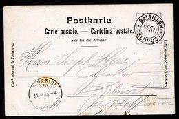 A6025) Schweiz Sonderkarte Feldpost No.50 1905 Truppenzusammenzug - 1882-1906 Wappen, Stehende Helvetia & UPU