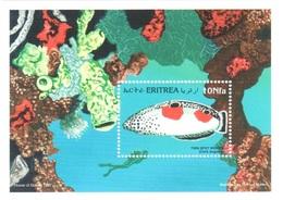 Eritrea Fish Sheet 6 Euros (in 2004 Catalog) - Eritrea