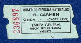 Ticket (año 1989) Museo... - Tickets - Entradas
