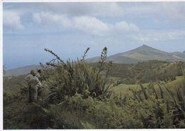 1 AK Island St. Helena * South Atlantic Ocean * Flagstaff Hill Viewed From Cabbage Tree Road - Britisches Überseegebiet - St. Helena