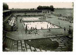 Macon - Centre Nautique, Les Piscines (animation, Au Bord De La Saône) Circulé 1951 - Macon