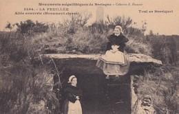 LA FEUILLEE     ALLEE COUVERTE.     TOUL AR BORRIQUET - Dolmen & Menhirs