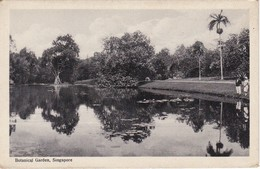 POSTAL DE SINGAPORE DE BOTANICAL GARDEN (SINGAPUR) - Singapur