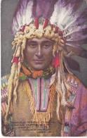 POSTAL DE EAGLE FEATHERS THE SONG OF HIAWATHAT LONGFELLOW (INDIO AMERICANO) - Otros Temas