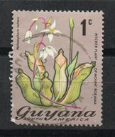 Ref: 1278. Guyana. Flora. 1971-76. Pitcher Plant - Guyana (1966-...)