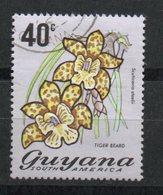 Ref: 1280. Guyana. Flora. 1971-76. Tiger Beard - Guyane (1966-...)
