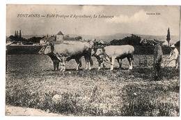FONTAINES ECOLE PRATIQUE D AGRICULTURE LABOURAGE ANIMEE - France