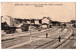 SEMBADEL GARE TRAINS AU MILIEU DU BOIS NOIR ANIMEE - France