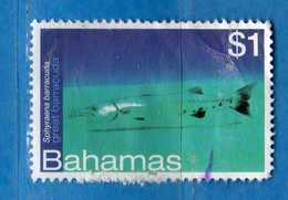 (Us3) ) BAHAMAS ° 2012 - FAUNE MARINE. . Usato  Vedi Descrizione. - Bahamas (1973-...)