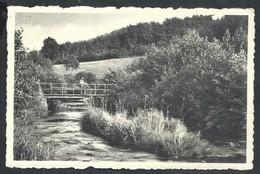 +++ CPA - DAVERDISSE - Pont De Fays - Nels   // - Daverdisse