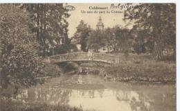 Cul-des-Sarts - Culdessart - Un Coin Du Parc Du Château - Edit. Richoux-Marée - 1933 - Philippeville
