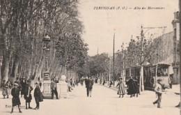 *** 66  *** PERPIGNAN  Avenue De La Gare Et Chambre De Commerce - TTBvoyagé - Perpignan
