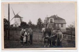 Ronse Molen , Renaix , Moulin - Renaix - Ronse