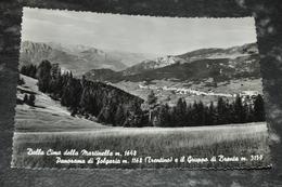 5729    DALLA SIMA DELLA MARTINELLA, PANORAMA DI FOLGARIA - Trento