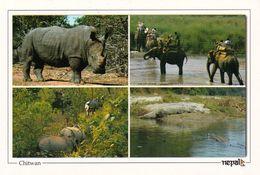 1 AK Nepal * Chitwan-Nationalpark - Seit 1984 UNESCO Weltnaturerbe - 1973 Gegründet - Der Erste Nationalpark Des Landes - Nepal