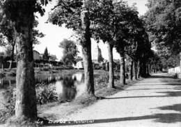 25 - Pontarlier - Beau Plan Du Doubs - L'Eglise - Pontarlier