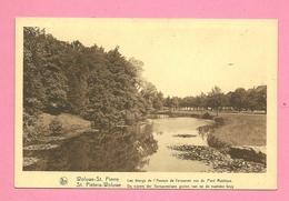 C.P. Woluwe-Saint-Pierre = Les  étangs De L' Avenue De  Tervuren Vue  Du  Pont Rustique - Woluwe-St-Lambert - St-Lambrechts-Woluwe