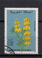 YT N° 1207 - Oblitéré - Fleurs - Marruecos (1956-...)