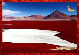 BOLIVAIA, SALAR DE UYUNI, LA LAGUNA COLORADA DENTRO DA RESERVA NACIONAL DE LA FAUNA ANDIN EDUARDO ALVARO [57171] - Bolivia