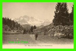 BRUNIG, SUISSE - WEG NACH DEM BRUNIG MIT OLTSCHIHORNER - ANIMATED - 3/4 BACK - VERLAG, FR. WAGNER - - Suisse