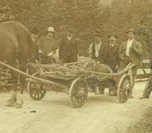 RRR! (3 Scan) JÄGER,Geschossenes Wild (Bär?), Fahrad, Pferd, Transportwagen, Jäger Alte Private Fotokarte Gel.1912? - Sonstige