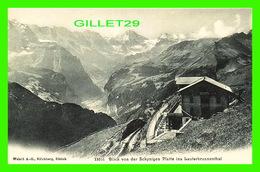 GünDLISCHWAND, SUISSE - BLICK VON DER SCHYNIGEN PLATTE INS LAUTERBRUNNENTHAL - WEHRLI, A. G. GARE DE TRAINS - 3/4 BACK - - BE Berne