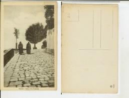 Fiesole (Firenze): Salita Di S. Francesco. Cart. Fp Inizio '900 (animata) - Firenze