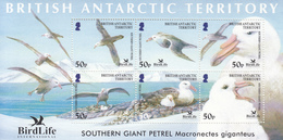 2005 British Antarctic Territory Birdlife Petrels Oiseaux Miniature Sheet Of 6 MNH - Ungebraucht
