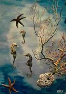 Animaux - Poissons - Hippocampes Ou Chevaux Marins - Voir Scans Recto-Verso - Poissons Et Crustacés