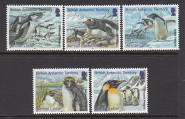 2014 British Antarctic Territory Penguins Airmail  Complete Set Of 5 MNH - British Antarctic Territory  (BAT)