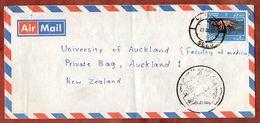 Luftpost, Languste, Nach Auckland 1987 (71831) - Oman