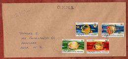 Luftpost, Fische, Penrhyn Nach Auckland 1979 (71832) - Penrhyn