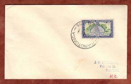 Luftpost, Landkarte, Rarotonga Cook Islands Nach Blenheim 1963 (71848) - Cook Islands