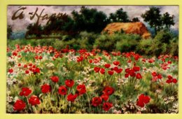 Flowers - Poppies By S. Shelton  - Tuck 9613, Fragrant Meadows Postcard - Flowers
