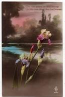 Lot De 30 Cartes Postales De Fleurs - Fleurs