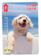 Titre De Transport Bus Card : Chien - Bus