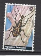 ##1, Rwanda, Insecte, Scarabée, Beetle - Rwanda