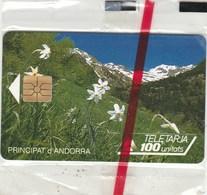 TELETARJA...PRINCIPAT D'ANDORRA...100 UNITATS...NEUVE SOUS BLISTER - Andorre