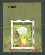 Guinea 1995 Orchids Souvenir Sheet Scott 1318 - Orchids