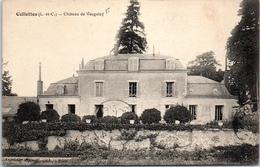 41 CELLETTES - Château De Vaugelay - France