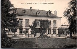 41 CELLETTES - Château D'ornay - France