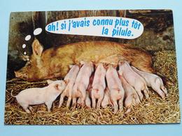 Ah ! Si J'avais Connu Plus Tôt La Pilule. ( Animaus Humoristiques AN 75 - CIM ) Anno 19?? ( Zie / Voir Photo ) ! - Humour