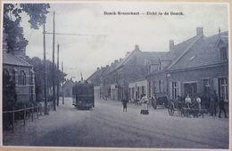 Brasschaat-Donck , Met Tram En Hondenkar  (Reproduction - Photo) - Brasschaat