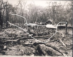 7 1961. Ndola Rhodesia. Katanga Belgian Congo Crash Of UNO Chief Dag Hammarskjoeld/ Press Photo - Aviation