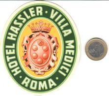ETIQUETA DE HOTEL  - HOTEL HASSLER-VILLA MEDICI   -ROMA  -ITALIA - Hotel Labels