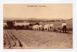 - CPA AGRICULTURE - EN MORVAN - Labourage - Edition Guignard - - Cultures