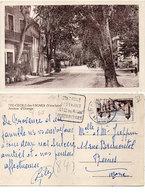 SAINTE CECILE LES VIGNES - Avenue D' Orange - Cachet Daguin    (112417) - France