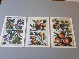 3 Affiches Décorations De Dessins De Fruits Du Musée Des Herbes De ABOCA & - Afiches