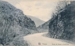 CPA - Belgique - Vresse - Route De Vresse à Orchimont - Vresse-sur-Semois