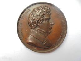 CHARLES ROGIER-MINISTRE DE L'INTERIEUR En 1851 Par JOUVENEL 58 Grammes-50 Mm - Professionals / Firms